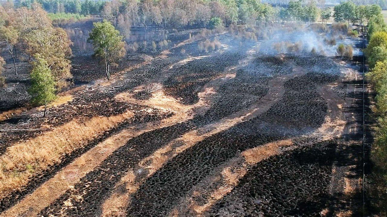 Veiligheidsregio's werken aan oprichting natuurbrandenteam