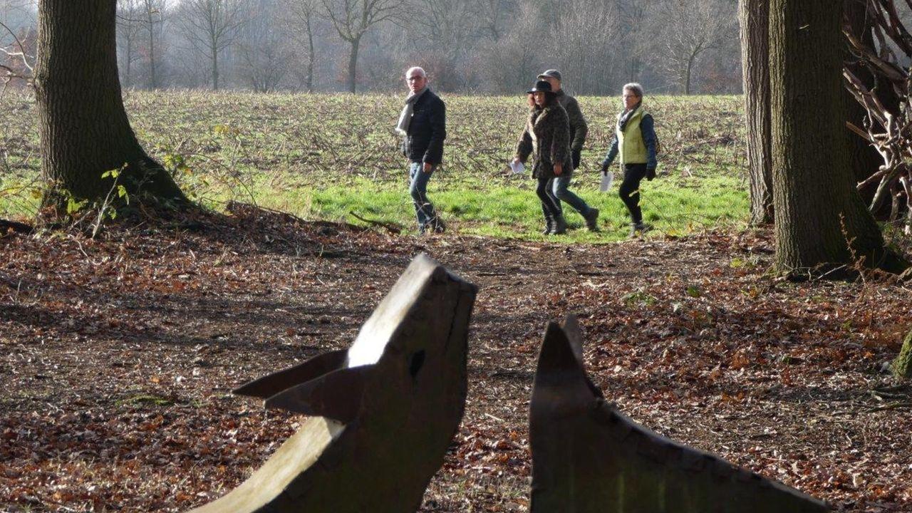 Deelnemers kiezen eigen route bij alternatieve Winterwandeling Meerlo