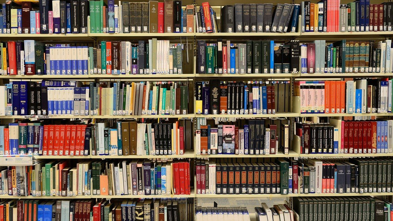 'Bibliotheek van de toekomst onder druk'